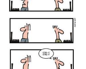 Geek&Poke:Stackoverflow