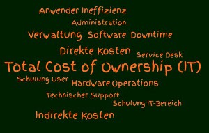 Total Cost of Ownership (TCO) – ein Überblick